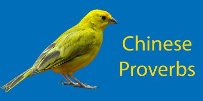 Chinese Proverbs: 8 Must Know Chinese Sayings
